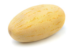melon Photo libre de droits