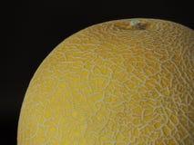 melon Imagens de Stock