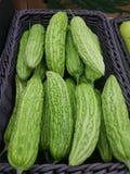 Melon amer photographie stock libre de droits