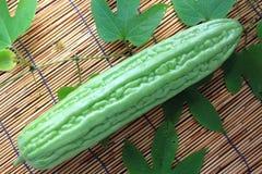 Melon amer Photographie stock