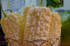 Melon amer au marché de nuit Photographie stock libre de droits