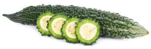 Melon amer d'isolement sur le fond blanc Image libre de droits
