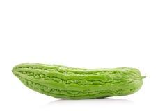 Melon amer d'isolement sur le fond blanc Photo stock