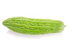 Melon amer d'isolement sur le fond blanc Photo libre de droits