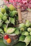 Melon amer et découpé en tranches sur le fond en bois Images libres de droits