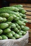 Melon amer sur le marché Photos libres de droits