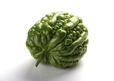 Melon amer vert frais de vue de côté sur le fond blanc Photo libre de droits