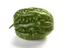 Melon amer vert frais de vue de côté Photo libre de droits