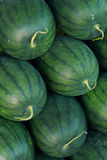 Melon background Royalty Free Stock Photography