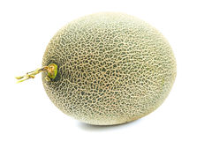 Melon Background. Fresh whole melon on a white background Stock Image