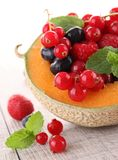 Melon and berries fruits Stock Photos
