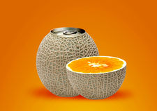 Melon can and half orange Stock Image