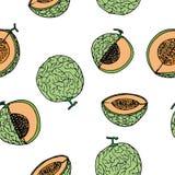 Melon Cantalop sömlös modell vid handteckningen på vit Royaltyfria Foton