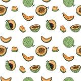 Melon Cantalop sömlös modell vid handteckningen på vit Royaltyfri Foto