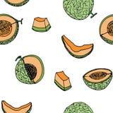 Melon Cantalop sömlös modell vid handteckningen på vit Fotografering för Bildbyråer