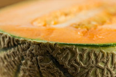 Melon close-up Stock Images