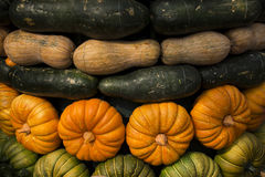 Melon combination. A variety of melon of permutation and combination Royalty Free Stock Photos