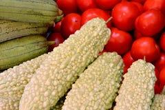Melon, courge de serviette et tomate amers Photos stock