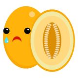 Melon crying face emoji vector illustration Royalty Free Stock Photos