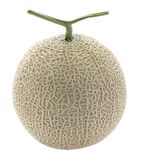Melon, cut out, without shadows Royalty Free Stock Photos