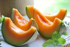 Melon Royalty Free Stock Photography