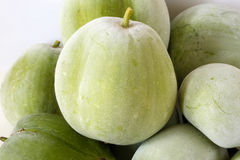 Melon d'hiver de pile Photos stock
