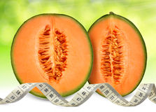 Melon de cantaloup Photo libre de droits