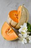 Melon de cantaloup Images libres de droits
