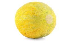 Melon de cantaloup Photos libres de droits
