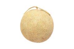 Melon de cantaloup d'isolement sur le fond blanc Photographie stock libre de droits