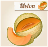 Melon. Detailed Vector Icon Royalty Free Stock Photo