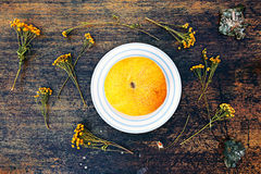 Melon and dried chamomile close up view over dark background. Royalty Free Stock Images