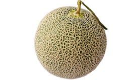 Melon du Japon en isolation Images stock