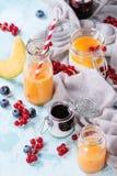 Melon et smoothie de myrtilles image stock
