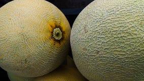 Melon för hudtexturbuah fotografering för bildbyråer