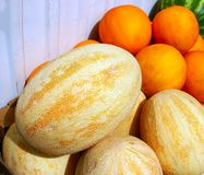 Melon frais à vendre sur le marché, dans une boîte Photographie stock