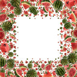 Melon Frame (on white) stock images