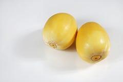 Melon fruit Royalty Free Stock Photo
