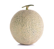 Melon fruit isolated on the white background Royalty Free Stock Photography