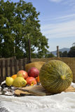 Melon and fruit outdoors Stock Images
