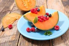 Melon and fruits Royalty Free Stock Photo