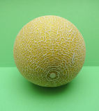 Melon Galia fruit Royalty Free Stock Images