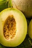 Melon Royalty Free Stock Photography