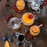 Melon i czarnej jagody smoothie zdjęcie stock