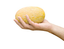 Melon In Hand Stock Photography
