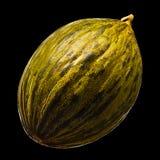 Melon isolated on black background Stock Photo