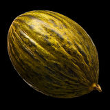 Melon isolated on black background. Royalty Free Stock Images