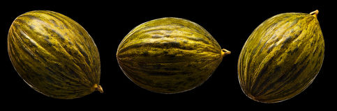 Melon isolated on black background. Fresh melon isolated on a black background Stock Image