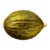 Melon isolated on white background. With clipping path Stock Photography
