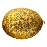 Melon isolated on white background. With clipping path Royalty Free Stock Photos